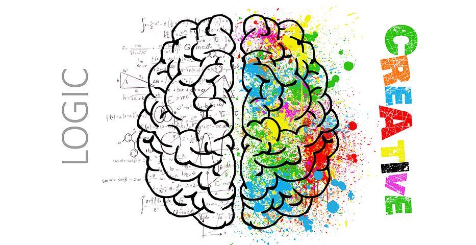 Feldenkrais e cervello